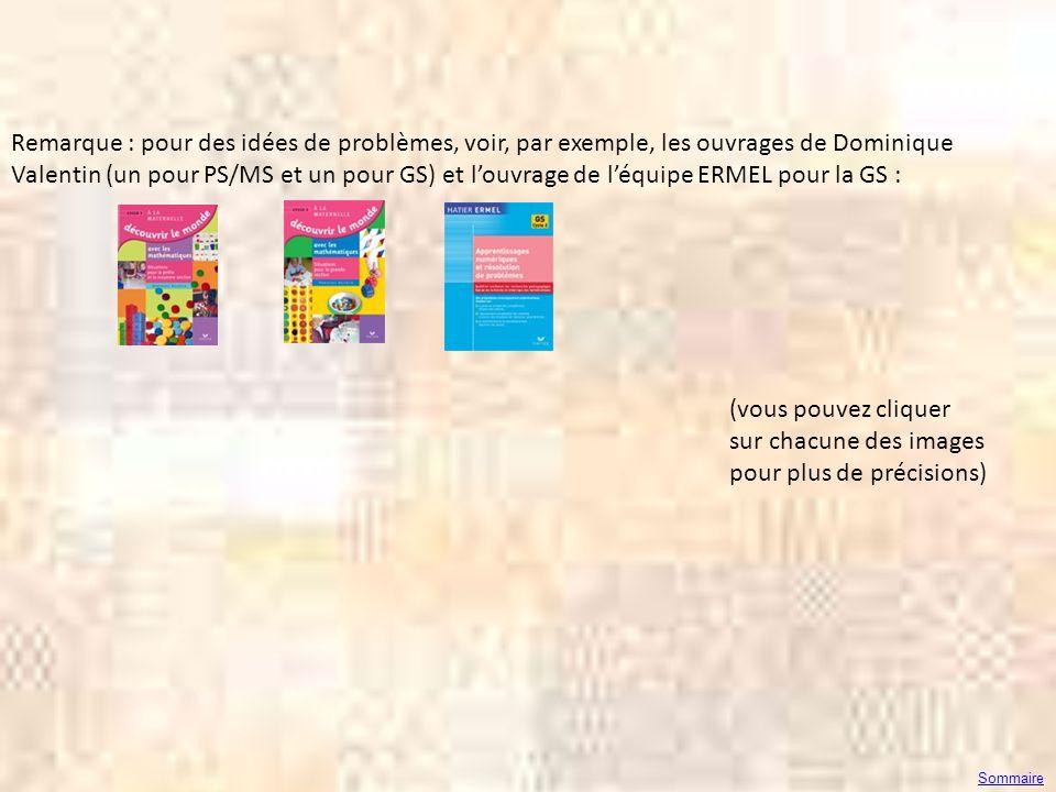 Remarque : pour des idées de problèmes, voir, par exemple, les ouvrages de Dominique Valentin (un pour PS/MS et un pour GS) et louvrage de léquipe ERM