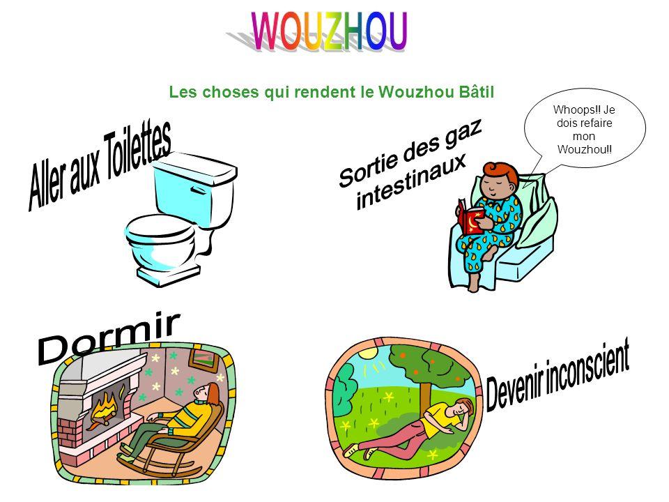 Les choses qui rendent le Wouzhou Bâtil Whoops!! Je dois refaire mon Wouzhou!!