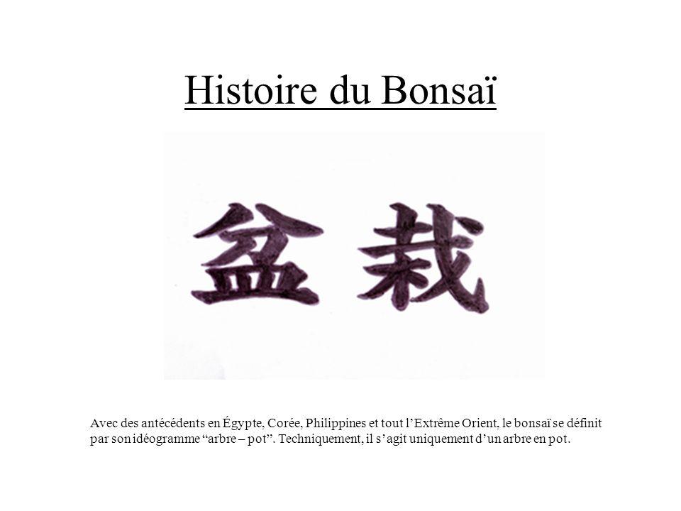 Histoire du Bonsaï Avec des antécédents en Égypte, Corée, Philippines et tout lExtrême Orient, le bonsaï se définit par son idéogramme arbre – pot. Te