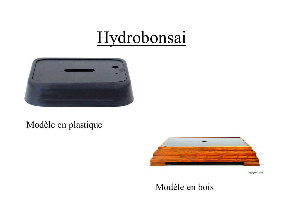 Hydrobonsai Modelo de madera Modèle en bois Modèle en plastique