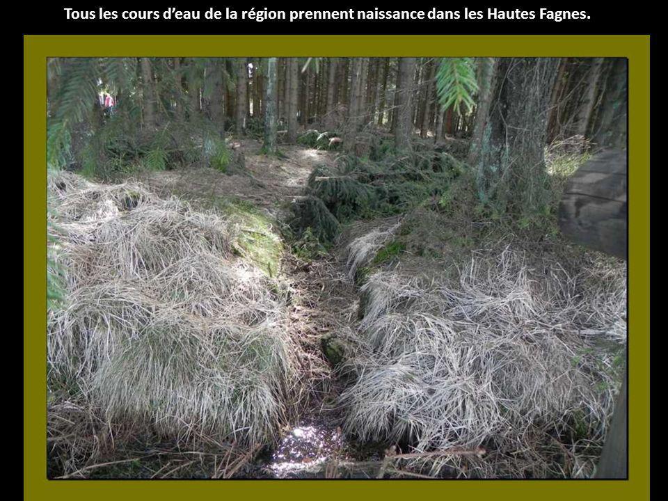 La surface des tourbières actives ne représente plus qu une centaine d hectares.