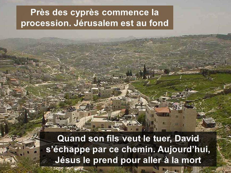 La Semaine Sainte, ce ne sont pas les vacances de printemps JÉSUS veut vivre la Pâque dans ta maison JÉSUS veut vivre la Pâque dans ta maison