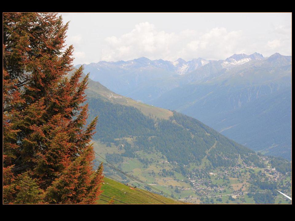 vue de Bellwald et la vallée de Conches