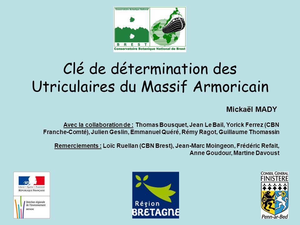 INTRODUCTION Afin daider les botanistes Armoricains à une meilleure identification des taxons du genre Utricularia, une clé dichotomique basée sur les critères de distinction les plus discriminants est proposée.