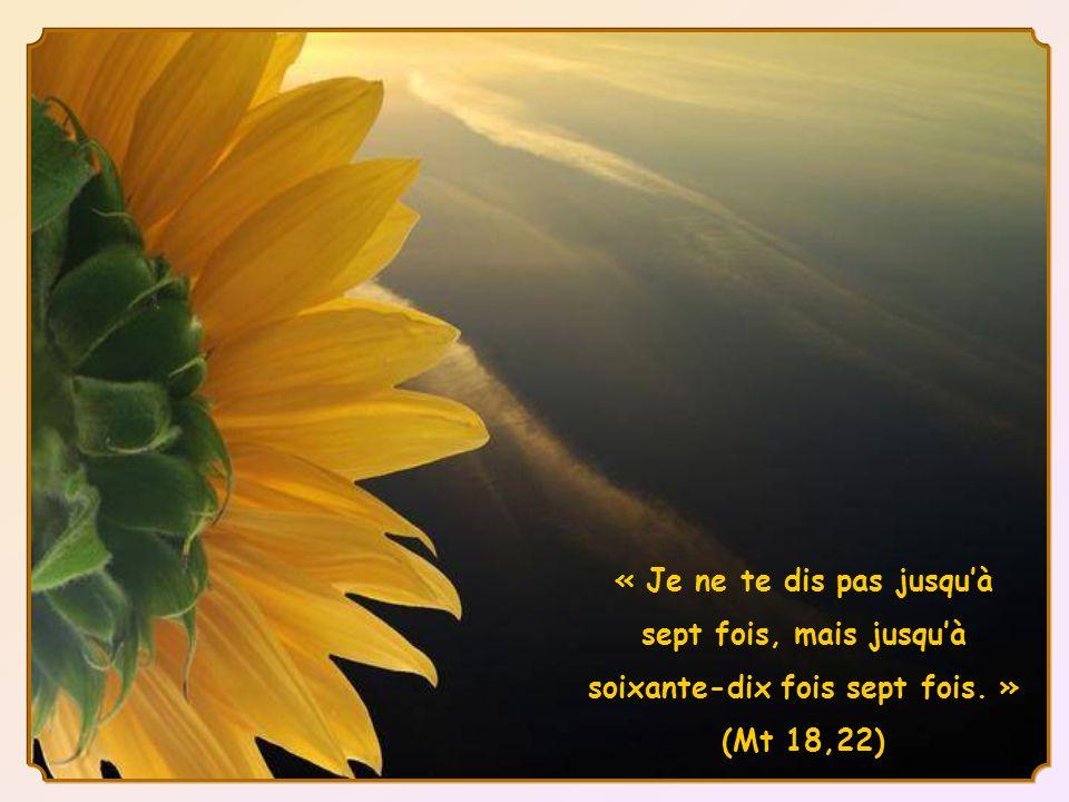 Mais en précisant : «…jusquà soixante-dix fois sept fois », Jésus montre que pour lui le pardon ne doit pas avoir de limites, quil faut toujours pardo