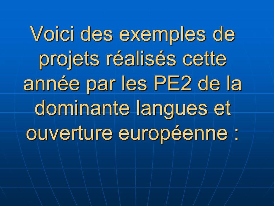 Voici des exemples de projets réalisés cette année par les PE2 de la dominante langues et ouverture européenne :