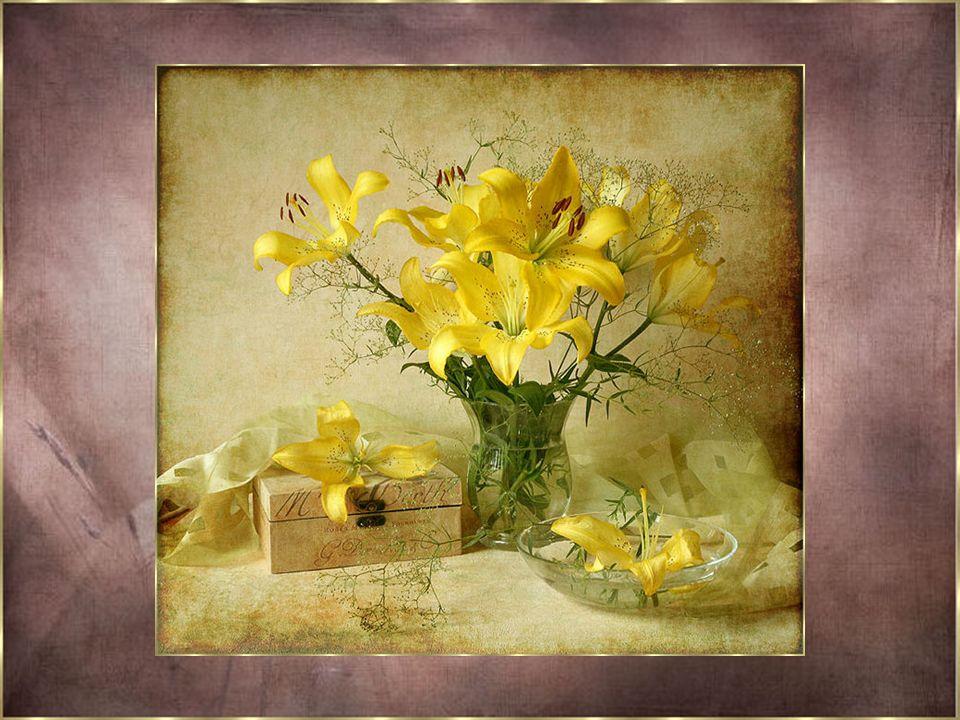 Quelle douceur pour votre cœur... Vous voyez comme c'est facile de cultiver les fleurs de l'Amour... En parlant...en rêvant ou en écrivant... Nous pou