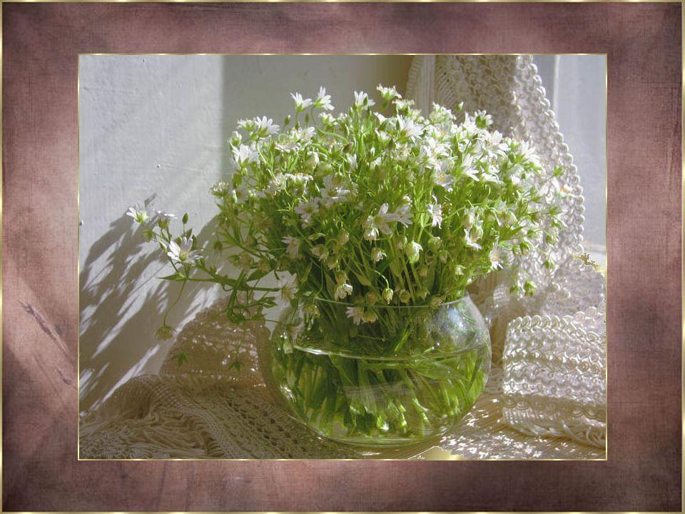 Car ces fleurs sont celles qui viennent de notre intérieur... Si vous saviez comme c'était bon à écrire... Se laisser aller tout simplement en laissan