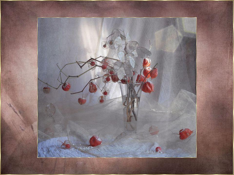 C'est tellement du bonheur... De cultiver les fleurs de l'Amour... Chacune sont mon cadeau pour vous... Ne vous privez pas de cultiver les fleurs de l