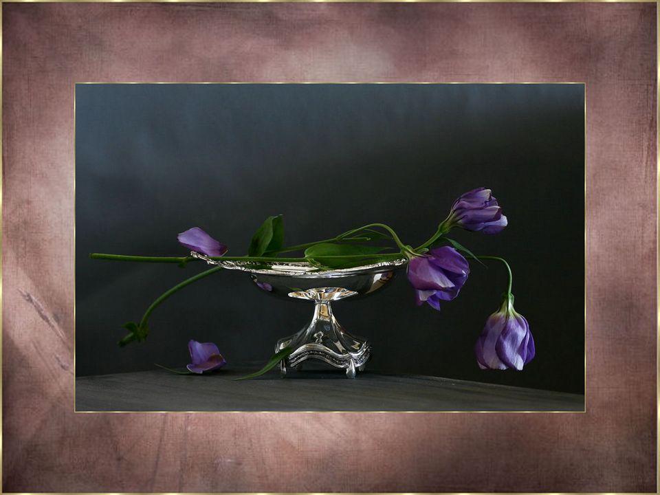 Il y a des fleurs si belles que nous voudrions...Offrir chaque jour à ceux que nous aimons... Ces fleurs si délicieuses aux couleurs radieuses... Nous