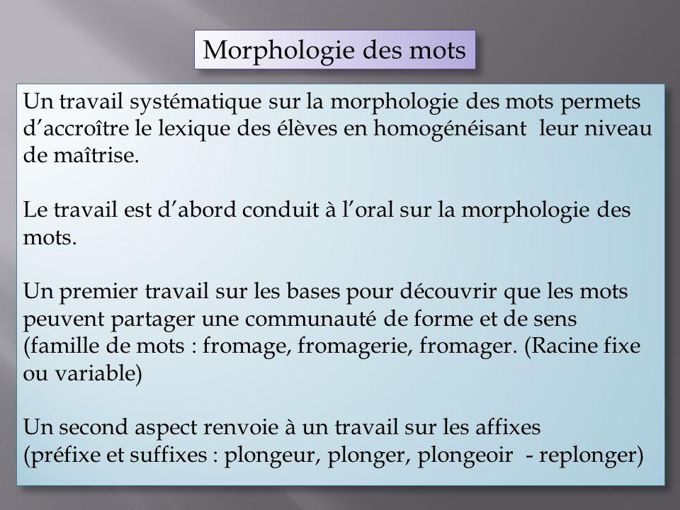 Un travail systématique sur la morphologie des mots permets daccroître le lexique des élèves en homogénéisant leur niveau de maîtrise. Le travail est