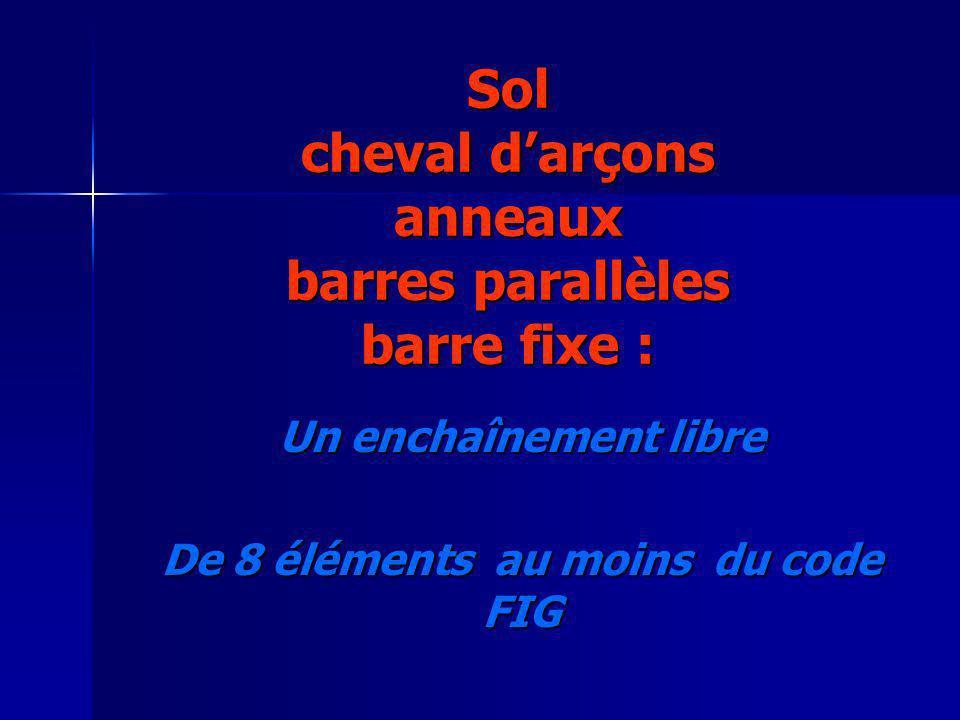 Sol cheval darçons anneaux barres parallèles barre fixe : Un enchaînement libre De 8 éléments au moins du code FIG