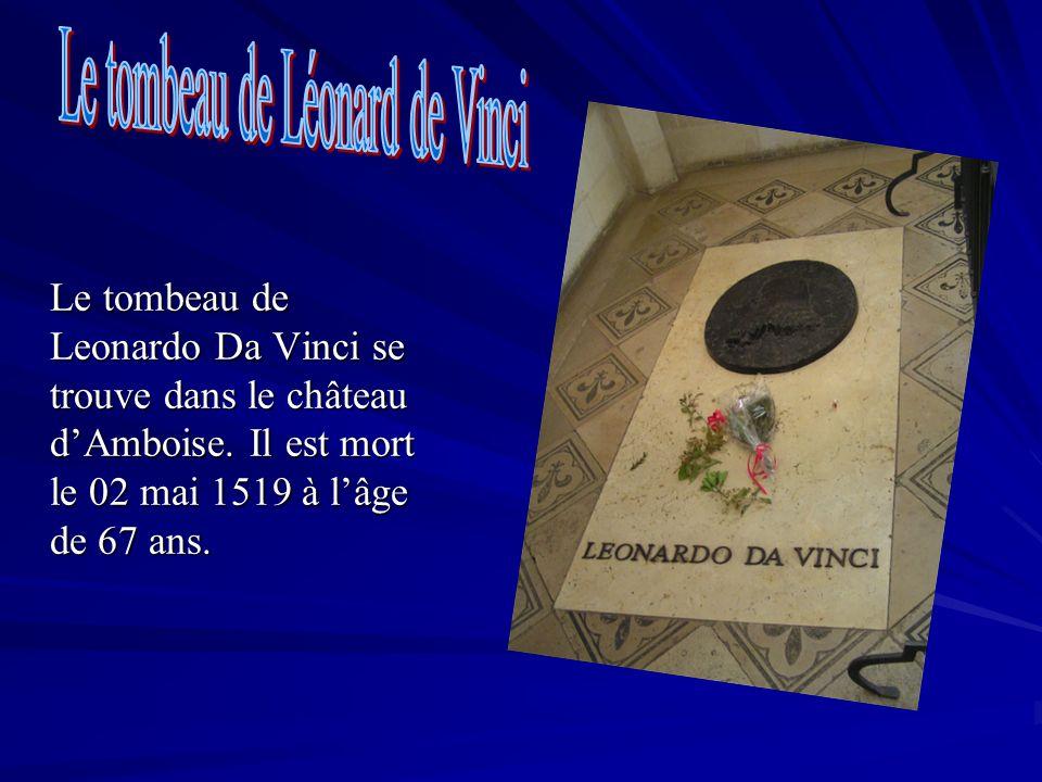 Le tombeau de Leonardo Da Vinci se trouve dans le château dAmboise. Il est mort le 02 mai 1519 à lâge de 67 ans.