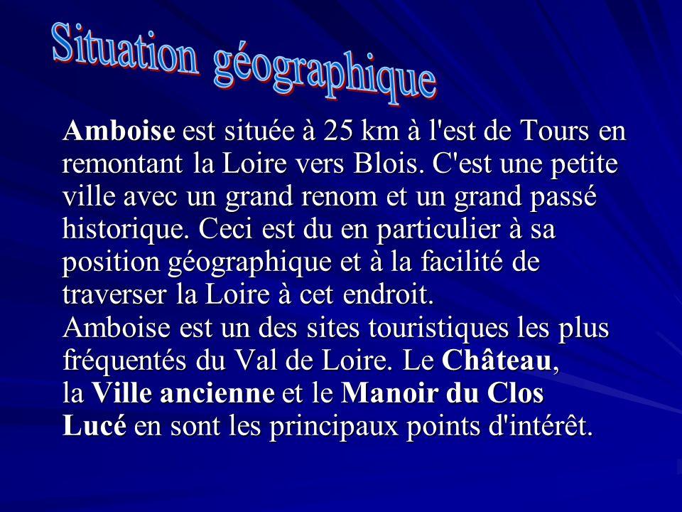 Amboise est située à 25 km à l'est de Tours en remontant la Loire vers Blois. C'est une petite ville avec un grand renom et un grand passé historique.