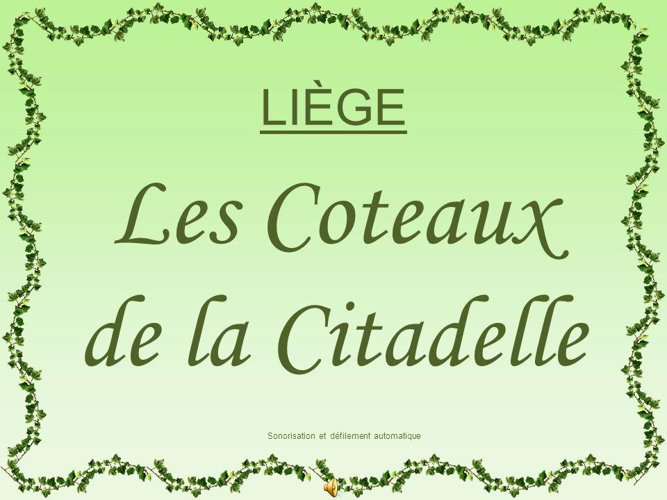 A proximité du centre-ville, surplombant la coulée miroitante de la Meuse, sétirent les Coteaux de la Citadelle.
