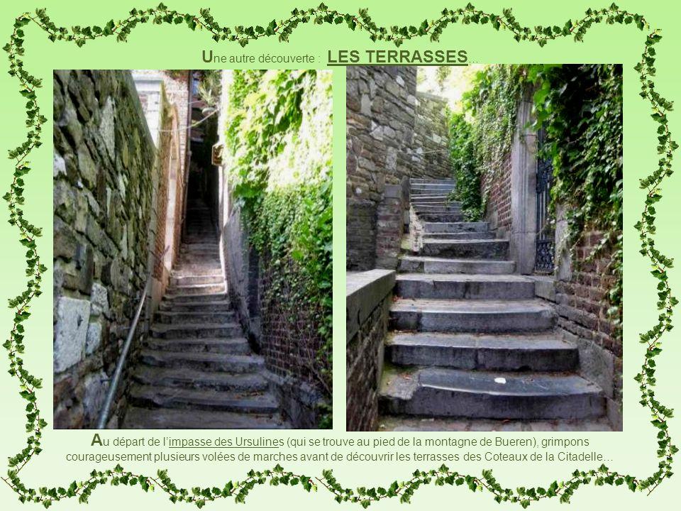 A u départ de limpasse des Ursulines (qui se trouve au pied de la montagne de Bueren), grimpons courageusement plusieurs volées de marches avant de dé