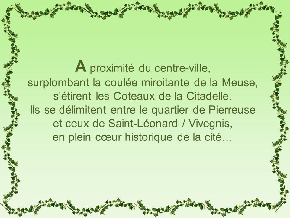 A proximité du centre-ville, surplombant la coulée miroitante de la Meuse, sétirent les Coteaux de la Citadelle. Ils se délimitent entre le quartier d