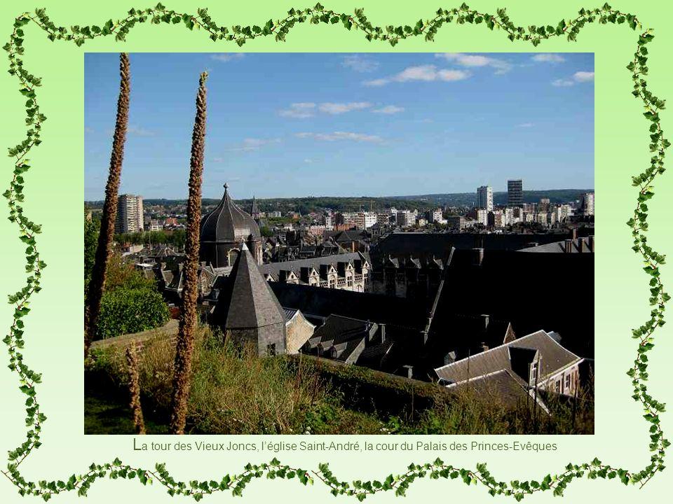 L a tour des Vieux Joncs, léglise Saint-André, la cour du Palais des Princes-Evêques