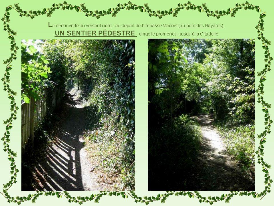 L a découverte du versant nord : au départ de limpasse Macors (au pont des Bayards), UN SENTIER PÉDESTRE dirige le promeneur jusquà la Citadelle