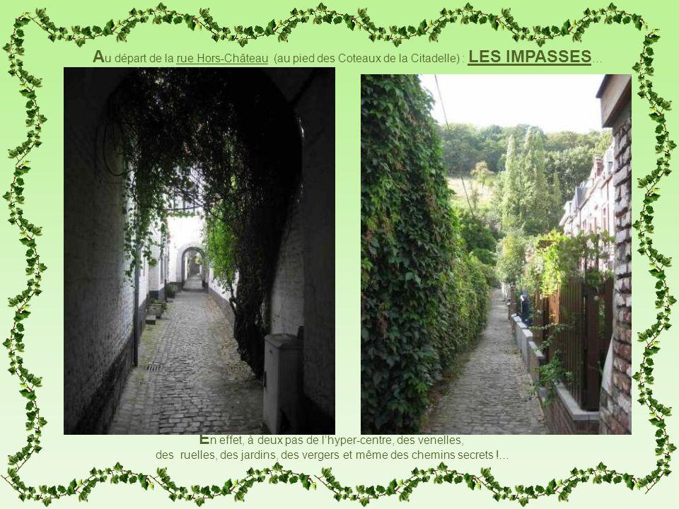 E n effet, à deux pas de lhyper-centre, des venelles, des ruelles, des jardins, des vergers et même des chemins secrets !… A u départ de la rue Hors-C