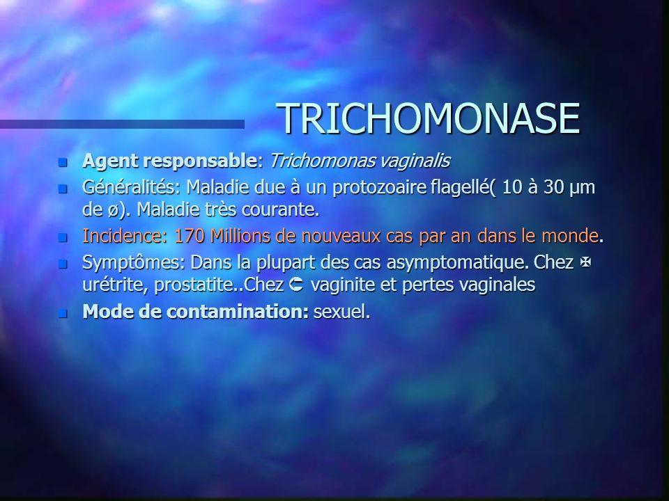 TRICHOMONASE n Agent responsable: Trichomonas vaginalis n Généralités: Maladie due à un protozoaire flagellé( 10 à 30 µm de ø). Maladie très courante.