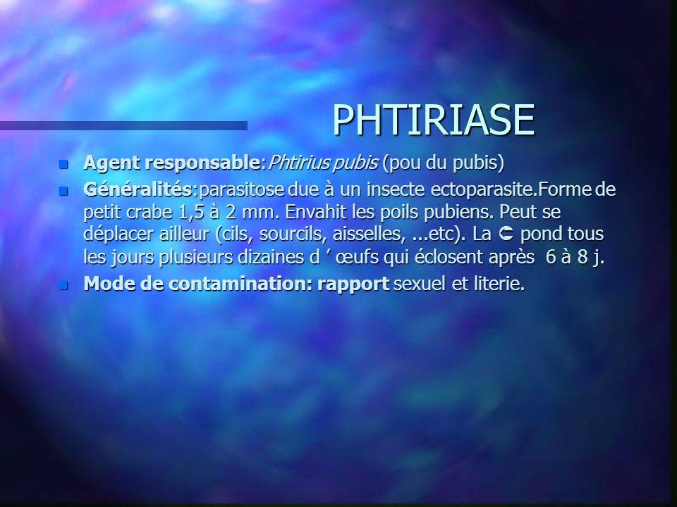 PHTIRIASE n Agent responsable:Phtirius pubis (pou du pubis) n Généralités:parasitose due à un insecte ectoparasite.Forme de petit crabe 1,5 à 2 mm. En