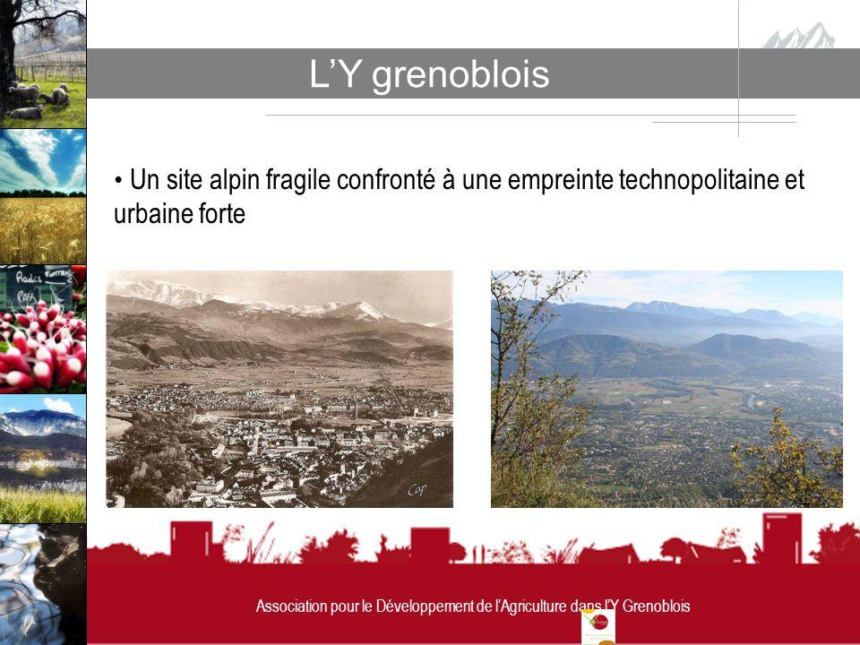 Association pour le Développement de lAgriculture dans lY Grenoblois LY grenoblois Association pour le Développement de lAgriculture dans lY Grenoblois Un site alpin fragile confronté à une empreinte technopolitaine et urbaine forte