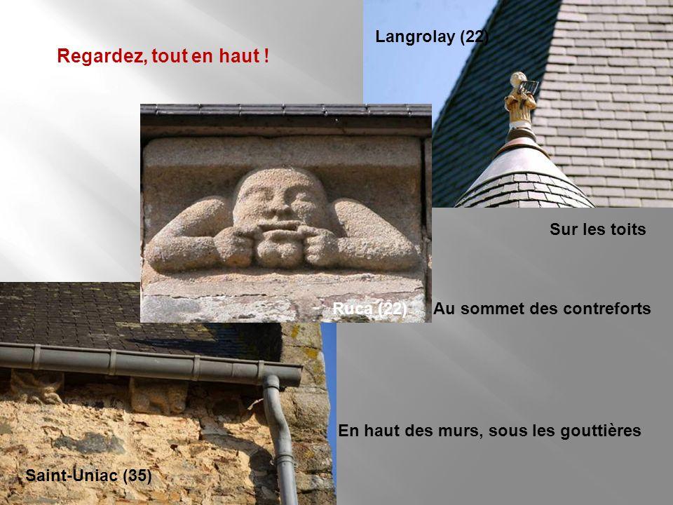 Les voûtes de pierre, les ogives, culots, clefs de voûte Plénée-Jugon, église Saint-Pierre, voûte du baptistère, sous le clocher