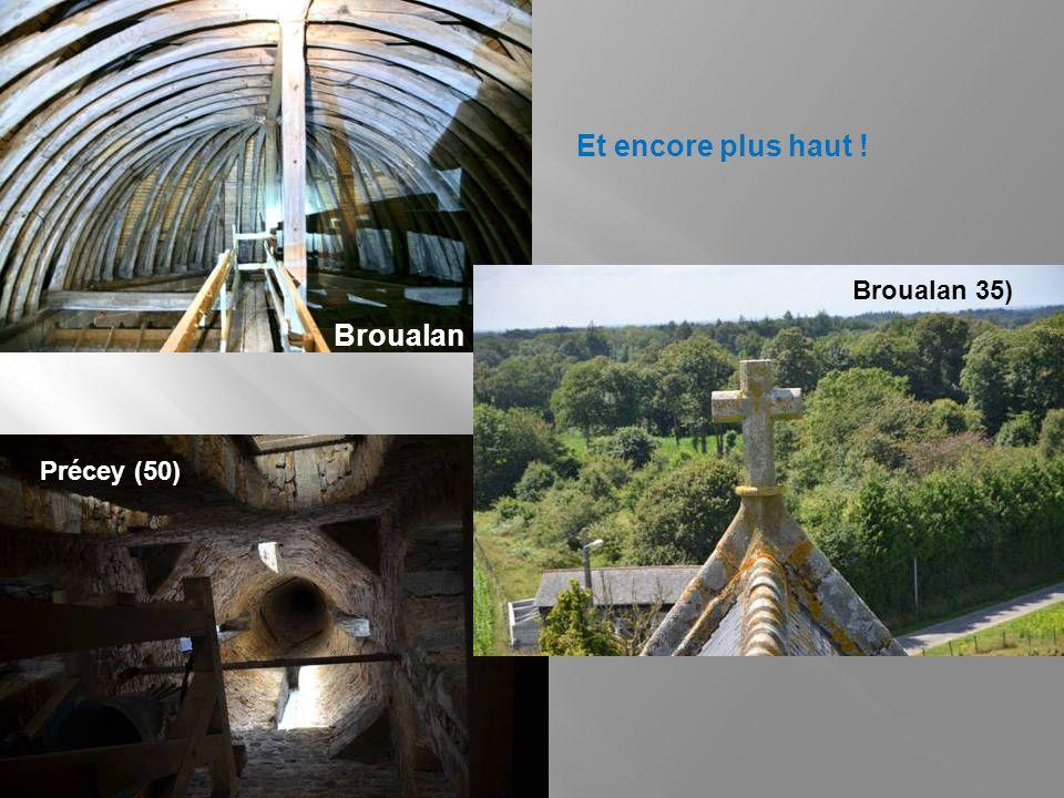Regardez, tout en haut ! Sur les toits Au sommet des contreforts En haut des murs, sous les gouttières Langrolay (22) Ruca (22) Saint-Uniac (35)