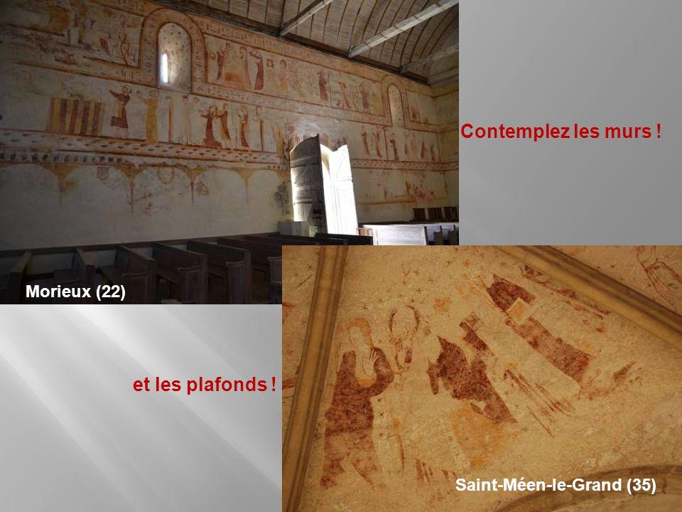 Regardez, à vos pieds ! Tréverien (35) Yvignac-la-Tour (22) Saint-Georges-de-Gréhaigne (35)