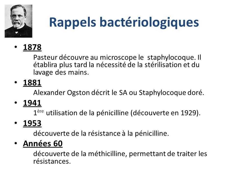 Rappels bactériologiques 1878 Pasteur découvre au microscope le staphylocoque.