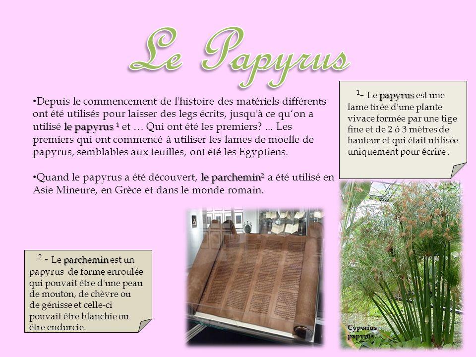 Depuis le commencement de l'histoire des matériels différents ont été utilisés pour laisser des legs écrits, jusqu'à ce quon a utilisé l ll le papyrus