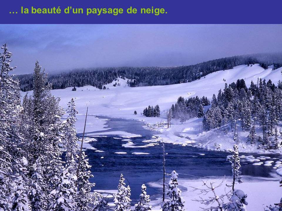 … de la symétrie dun cristal de neige jusquà…