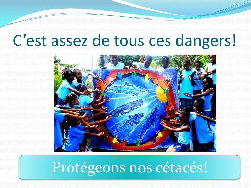 Cest assez de tous ces dangers! Protégeons nos cétacés!