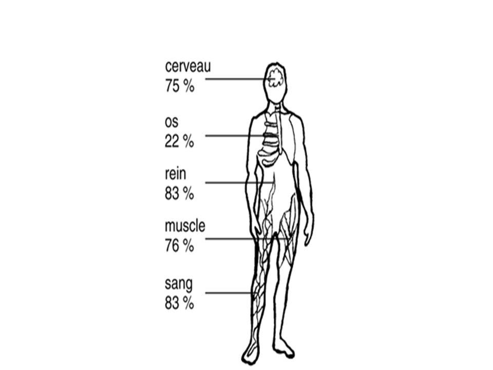 Linsuffisance de leau et de lassainissement est la cause primaire de maladies comme le paludisme, le choléra, les dysenteries, la schistosomiase, les hépatites infectieuses et les affections diarrhéiques, responsables de 3,4 millions de décès chaque année.