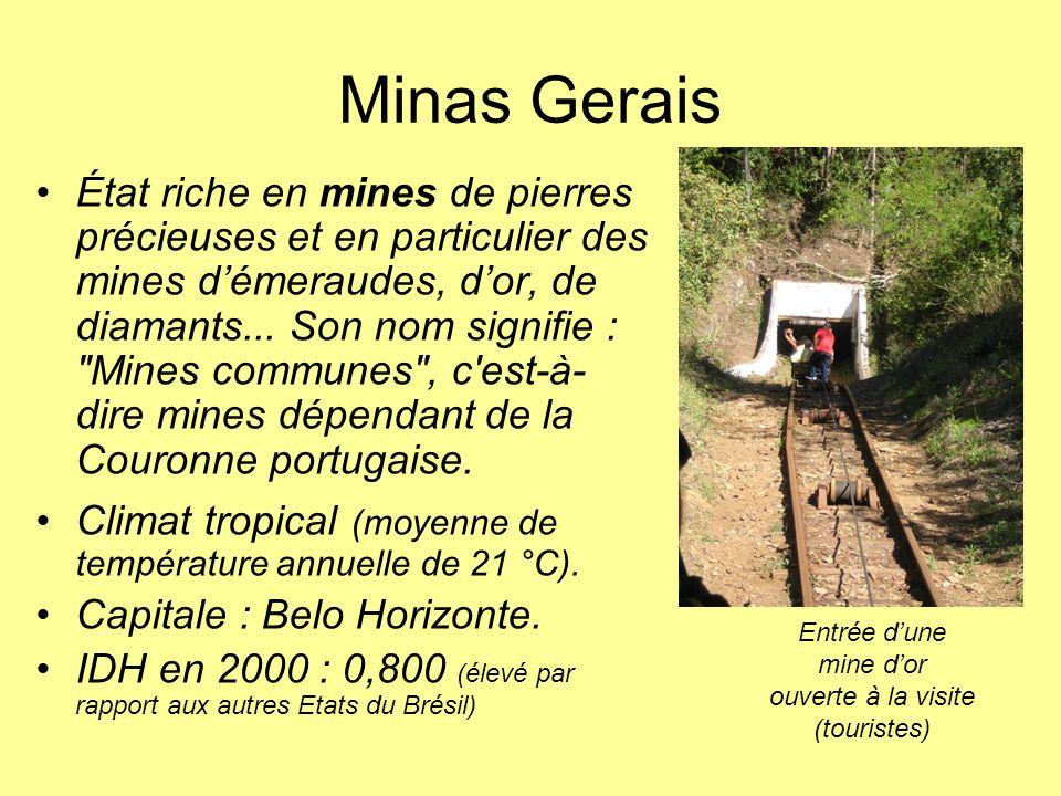 Dans le Minas Gerais Une favela « de riches » (bidonville installé depuis longtemps, bénéficiant dinfrastructures)