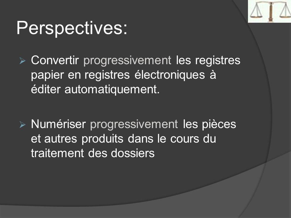 Perspectives: Convertir progressivement les registres papier en registres électroniques à éditer automatiquement. Numériser progressivement les pièces