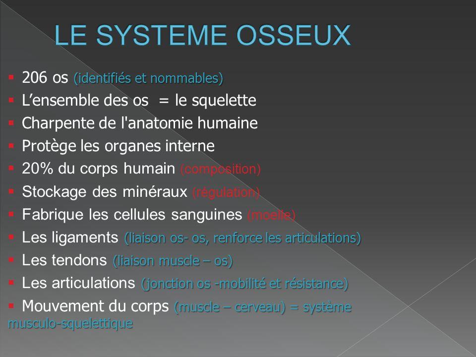 Exposé de Philippe Lanneau – CTR des Landes