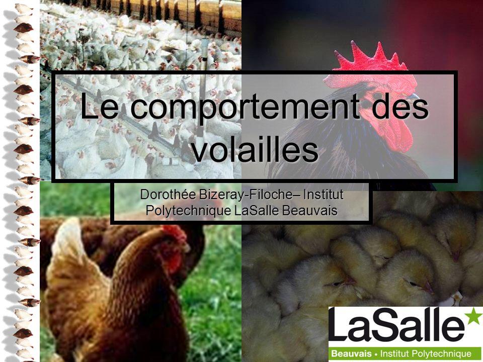 1 Le comportement des volailles Dorothée Bizeray-Filoche– Institut Polytechnique LaSalle Beauvais