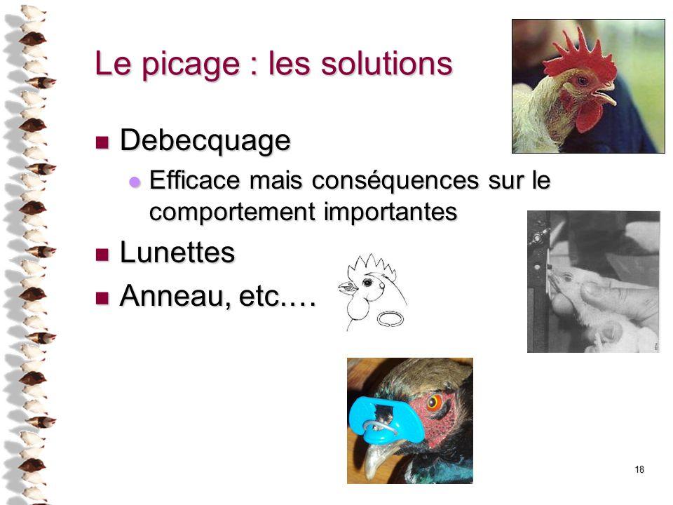 18 Le picage : les solutions Debecquage Debecquage Efficace mais conséquences sur le comportement importantes Efficace mais conséquences sur le compor