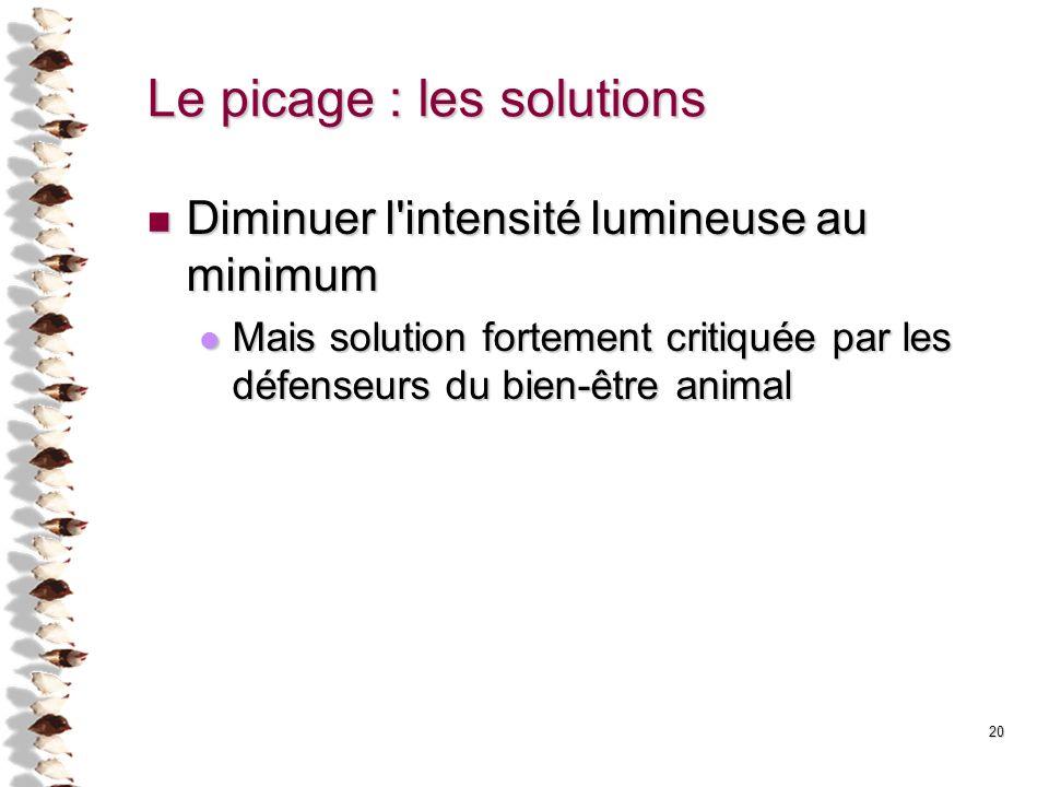 20 Le picage : les solutions Diminuer l'intensité lumineuse au minimum Diminuer l'intensité lumineuse au minimum Mais solution fortement critiquée par
