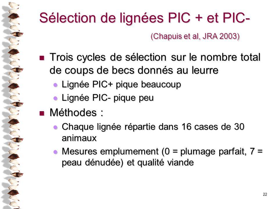 22 Sélection de lignées PIC + et PIC- (Chapuis et al, JRA 2003) Trois cycles de sélection sur le nombre total de coups de becs donnés au leurre Trois