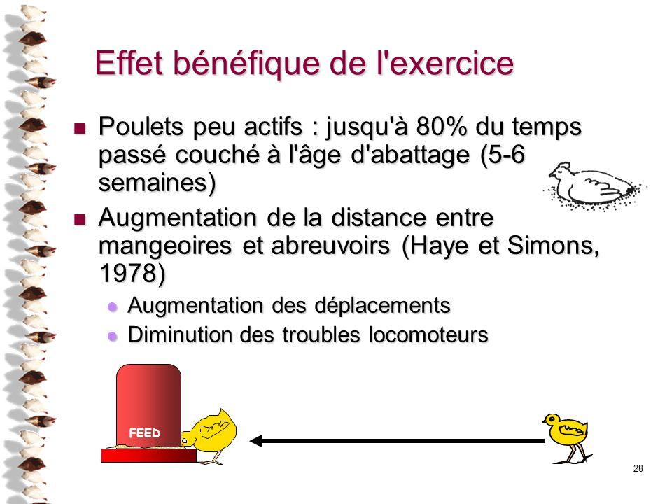 28 FEED Effet bénéfique de l'exercice Poulets peu actifs : jusqu'à 80% du temps passé couché à l'âge d'abattage (5-6 semaines) Poulets peu actifs : ju