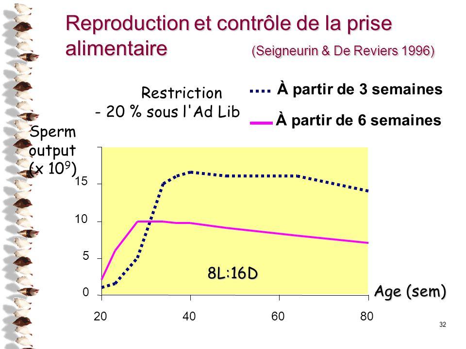 32 Reproduction et contrôle de la prise alimentaire (Seigneurin & De Reviers 1996) 20406080 0 5 10 15 8L:16D Sperm output (x 10 9 ) Age (sem) Restrict