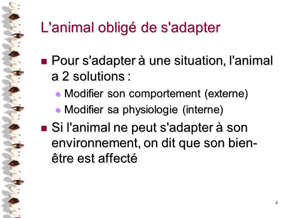 4 L'animal obligé de s'adapter Pour s'adapter à une situation, l'animal a 2 solutions : Pour s'adapter à une situation, l'animal a 2 solutions : Modif