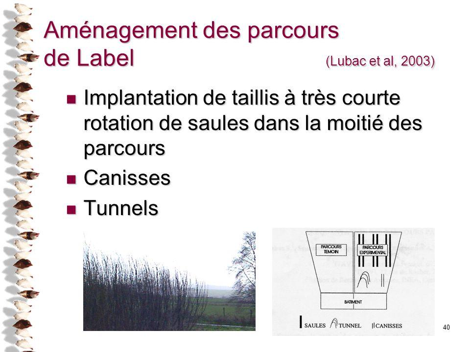 40 Aménagement des parcours de Label (Lubac et al, 2003) Implantation de taillis à très courte rotation de saules dans la moitié des parcours Implanta