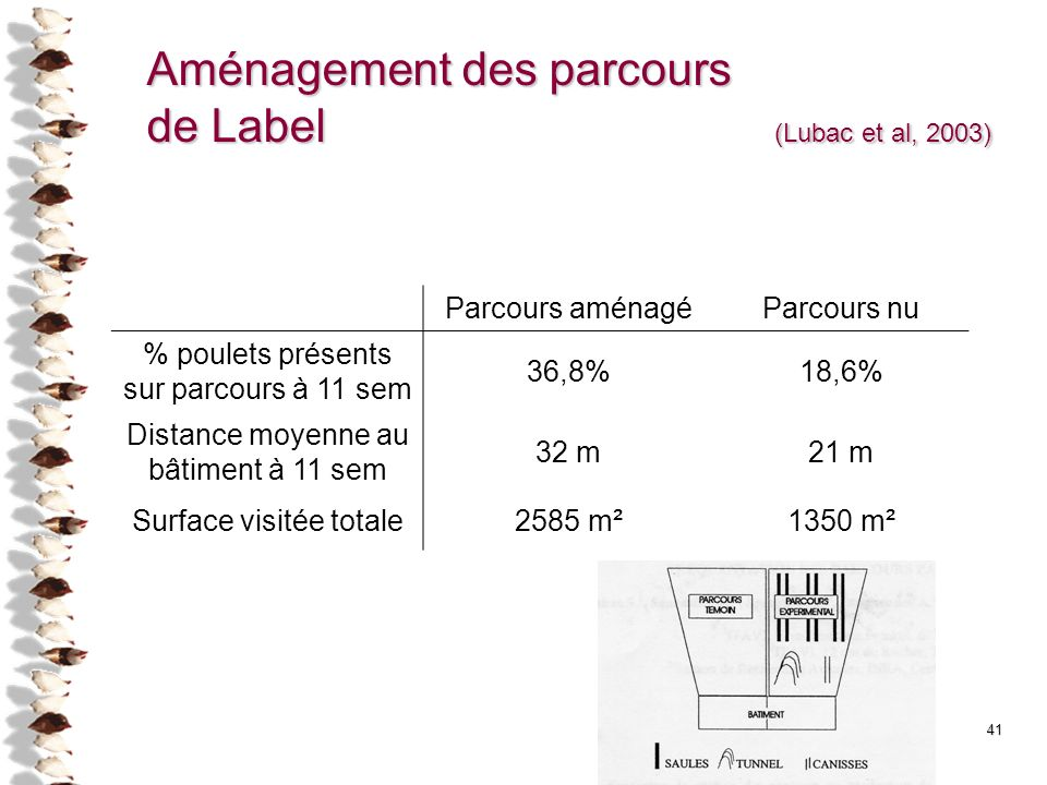 41 Aménagement des parcours de Label (Lubac et al, 2003) Parcours aménagéParcours nu % poulets présents sur parcours à 11 sem 36,8%18,6% Distance moye