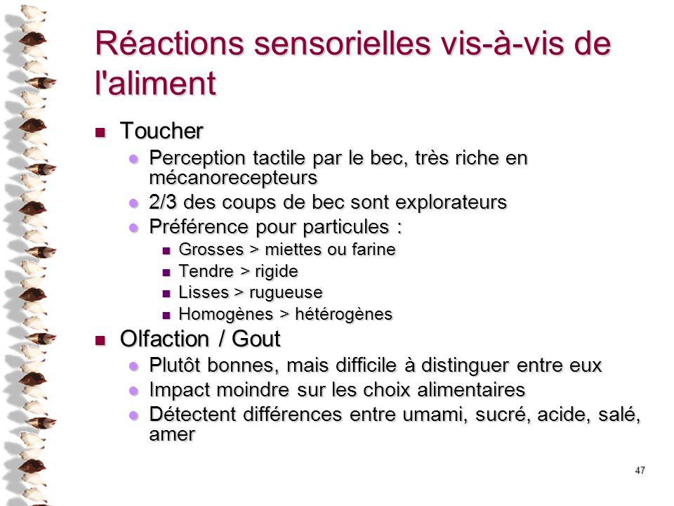 Réactions sensorielles vis-à-vis de l'aliment Toucher Toucher Perception tactile par le bec, très riche en mécanorecepteurs Perception tactile par le