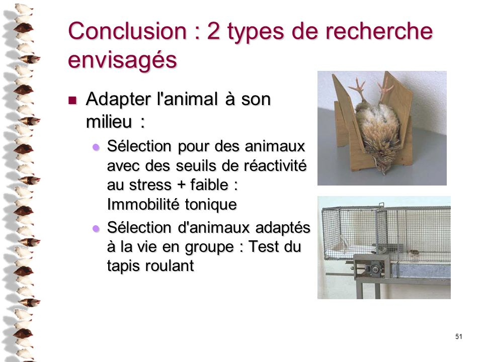 51 Conclusion : 2 types de recherche envisagés Adapter l'animal à son milieu : Adapter l'animal à son milieu : Sélection pour des animaux avec des seu