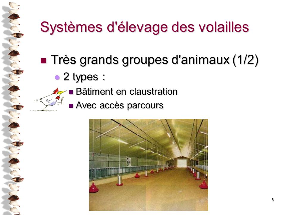 8 Systèmes d'élevage des volailles Très grands groupes d'animaux (1/2) Très grands groupes d'animaux (1/2) 2 types : 2 types : Bâtiment en claustratio